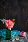 foto of climbing rose  - shrub roses in vase on dark background - JPG