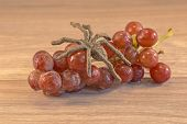 pic of creepy crawlies  - Grapes lying on a wooden surface with a spider crawing accross them - JPG