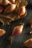 foto of red shallot  - Raw Organic Spicy Shallots on a Background - JPG