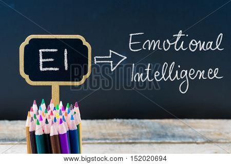 Essays On Emotional Intelligence