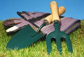 Small hand held garden tools with gardening gloves, grass and blue background.