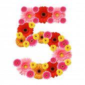 5, arabic numeral