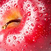 red apple, macro