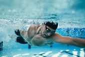 Постер, плакат: Fit Swimmer Training In The Pool