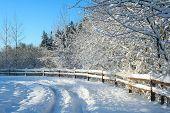 Beautiful winter snow landscape with a polarized blue sky.