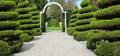 Manicured shrubs line an estate entrance.