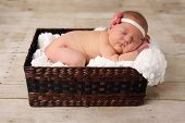 stock photo of newborn baby girl  - Newborn baby girl asleep in a wicker basket - JPG