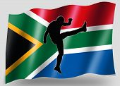 Country Flag Sport Icon Silhouette South Africa Rugby High Kicker
