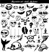 vector set : doodle - skull - bone