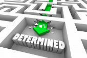 Determined Commited Determination Commitment Maze 3d Illustration poster