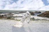 Crystal Glass Slipper On White Snow Covered Golf Course