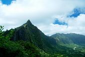 Mountains And Vegetation In Hawaii