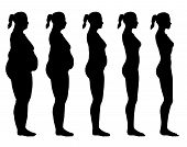 stock photo of flabby  - A side view illustration of 5 female silhouette - JPG