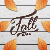 Fall Sale. Autumn Layout Design With Wooden Background And Fall Leves. Fall Sale, Promotion, Banner poster