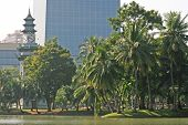 Lumpini Park, Thailand