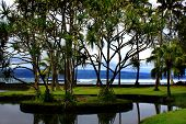 Richardson Ocean Park In Hilo, Hawaii