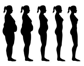picture of skinny fat  - A side view illustration of 5 female silhouette - JPG