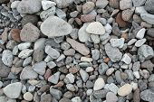 Various Marine Pebbles Close-up