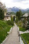 picture of engadine  - St - JPG