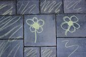 Flowers - Pavement Chalk Drawing - Regular