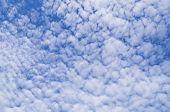 Altocumulus Clouds