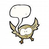 cartoon little owl hooting