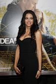 LOS ANGELES - FEB 1: Jenna Dewan arrives at the premiere of 'Dear John' held at the Grauman's Chines
