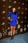 PASADENA - JAN 11: Olivia Wilde kommt in der Fox-2010-Winter-All-Star-Party statt bei Villa Sorisso