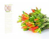 Fresh Chili