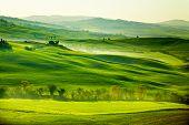 Countryside, San Quirico �?�?�?�´Orcia , Tuscany, Italy
