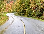 Auntumn Road