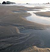 Reflective Tidepools On Sandy Beach