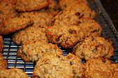 image of baked raisin cookies  - Baked raisin and oatmeal cookies for the crowd - JPG