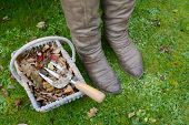 Woman's Winter Boots Next To A Basket Of Autumn Leaves