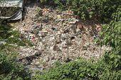 trash, environmental hazard.