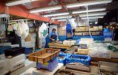 Tokyo- Nov 26: Worker Processing Fish At Tsukiji Wholesale Seafood And Fish Market In Tokyo Japan