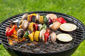 Delicious grilled vegetarian skewers on burning coals