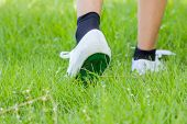 Foot In Sneaker Walking On Grassland