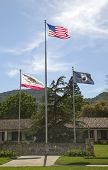 Flags honoring veterans of all wars at Veterans Home of California in Yountville, Napa Valley