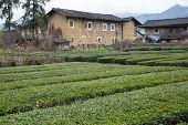Hakka Tulou Located In Fujian, China