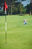 Golfer aiming lining up putt on green