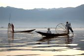 Traditional Fishing By Net In Inle Lake,myanmar.