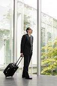 Businessman In Formal Wear Holding Luggage