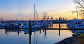 Sunset  View Of Port  And Marina. Tacoma, Wa