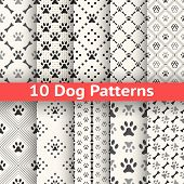 Set of animal seamless vector pattern of paw footprint