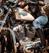 RUSSIA-JULY 7, 2013: Harley-Davidson v-twin Sportster 883. Harley-Davidson sustains a large brand community which keeps active through clubs, events, and a museum. Filter applied in post-production.