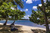 Mt Irvine Bay - Tobago
