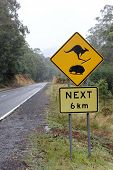 Kangaroo and Wombat Road sign in Snow country 2