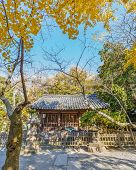 Kotokuin Temple in Kamakura Japan