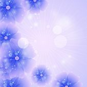 Floral Background Purple